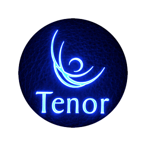 TENOR AUDIO - audio systems